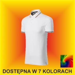 Koszulka PERFECTION PLAIN 251 Męska 200G